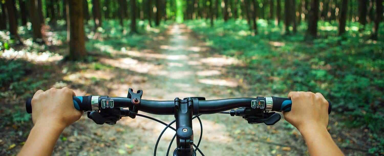 Spirited-Cyclist-Davidson.jpg