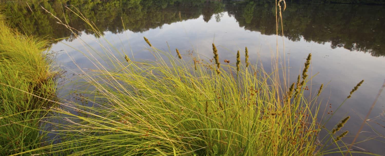 history-of-Lake-Norman.jpg