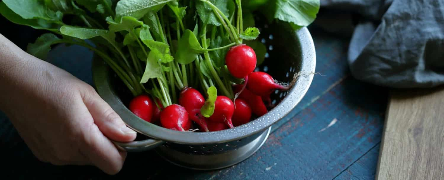 a colander with organic radishes inside