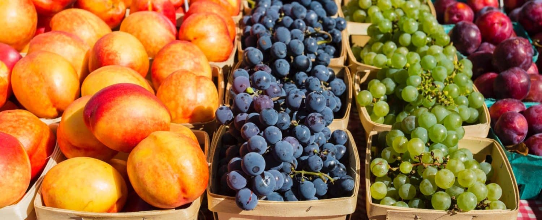 Assorted Fruits at Davidson Farmers Market