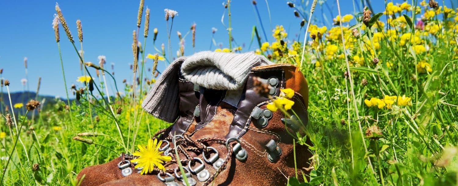 Hiking boots sitting outside by the grass with colorful flowers