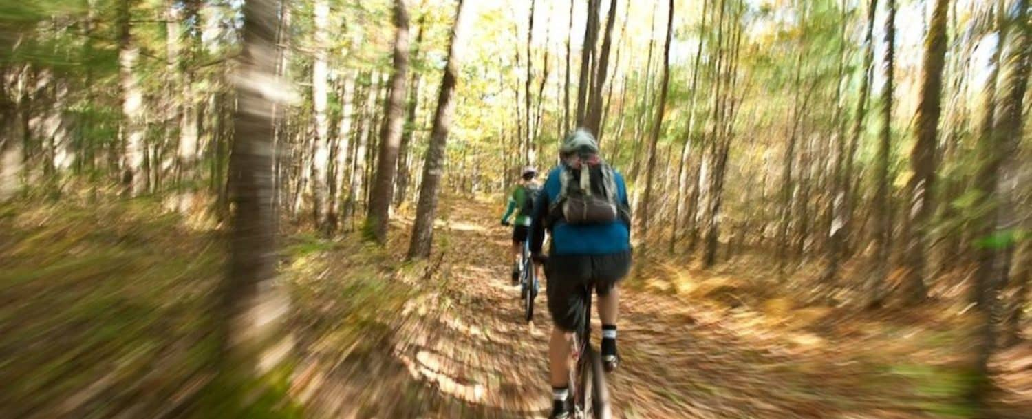 people riding bikes through woods