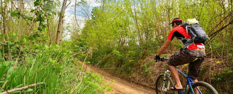 Biker on one of the North Carolina Mountain Bike trails