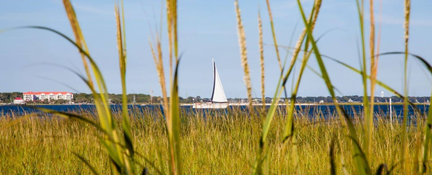 a sailboat on the water with some grass in front of it